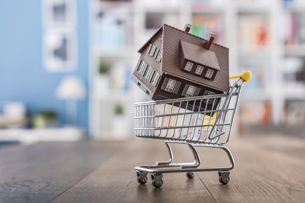 The Do's and Don'ts of Buying a Home - Home in Shopping Cart